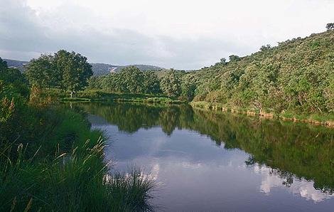 Parque-Nacional-de-Cabaneros