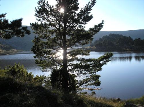 Neira Laguna-Negra