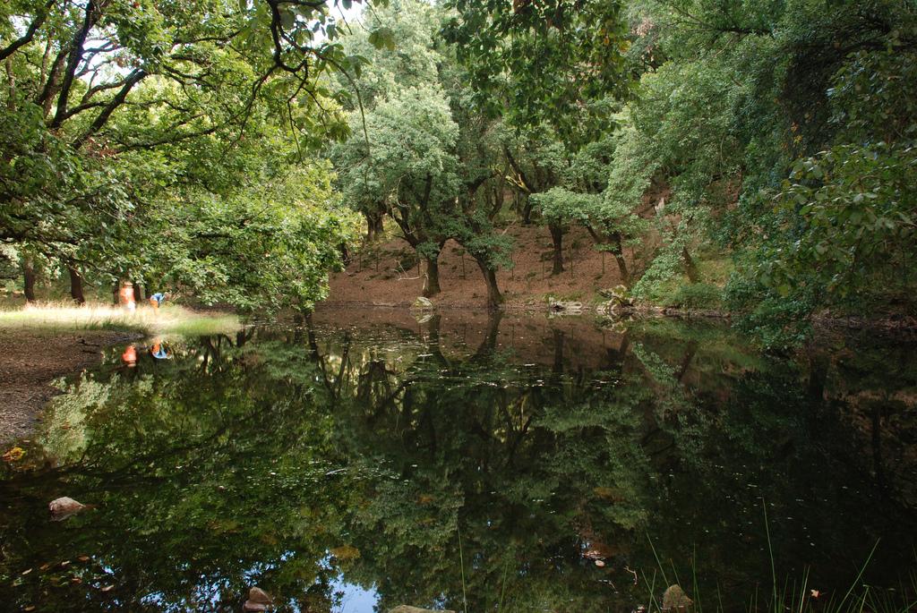 4 Alornocales Laguna Moral