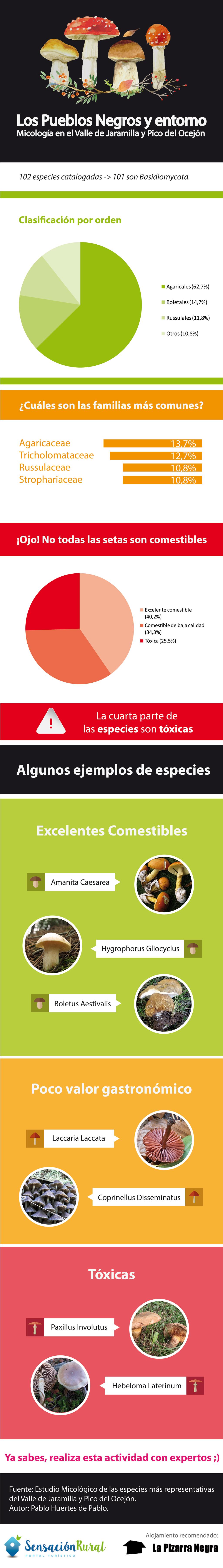 infografia micologia pueblos negros