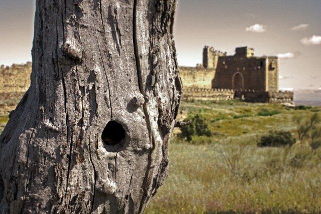 castillo montalban