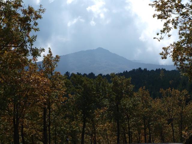 parque natural moncayo