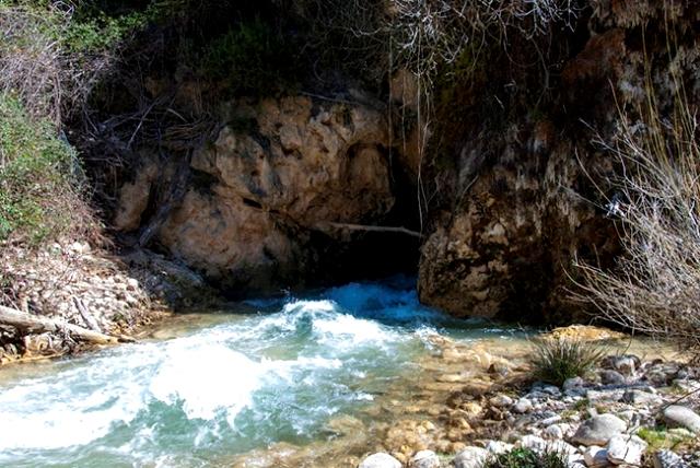 puente natural fonseca