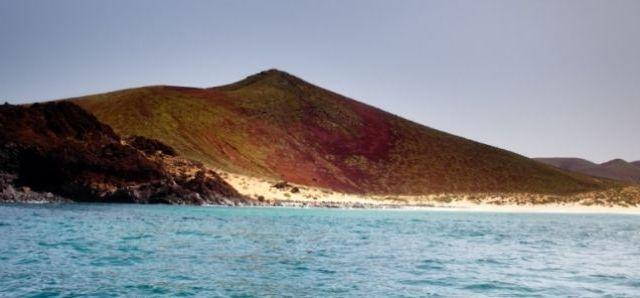 playa conchas teguise