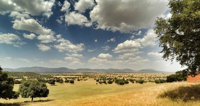 Resultado de imagen de parque nacional de cabañeros
