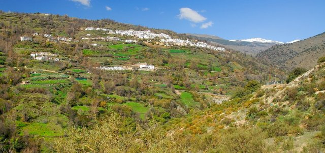 valle berchules