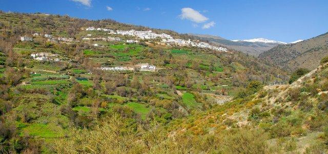 valle berchules