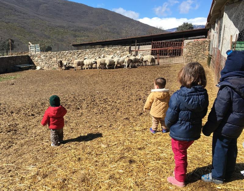 plan granja actividades niños