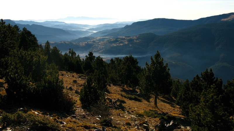 que ver pirineo catalan