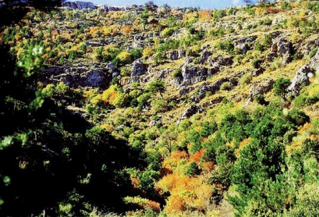 ruta barranco fonfria
