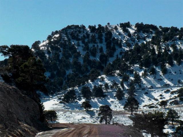 ruta prados alta montaña