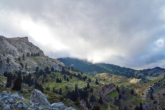 parque nacional sierra nieves
