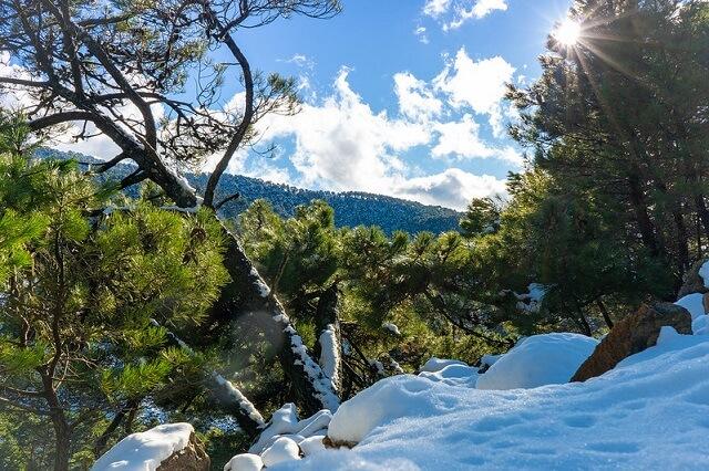 parques nacionales españa sierra nieves