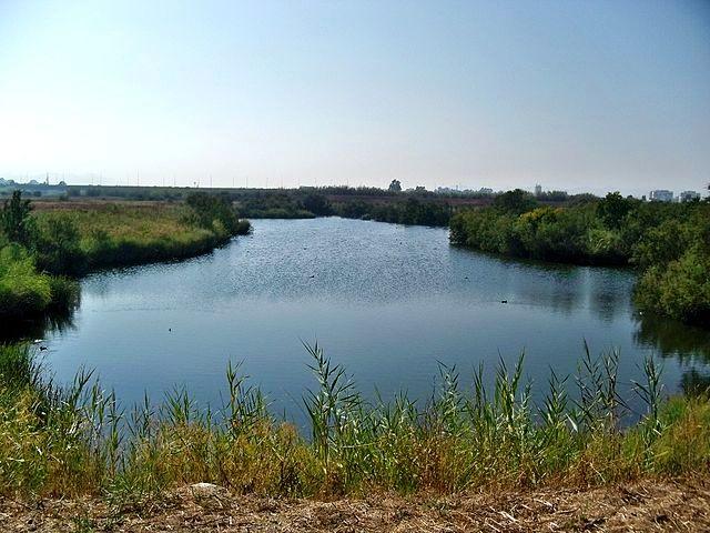 ruta desembocadura guadalhorce