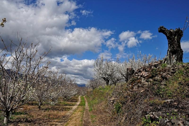 6 Rutas De Senderismo En Cáceres Sensación Rural