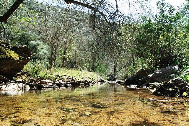 ruta arroyo guadalora hornachuelos