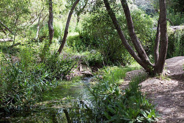 ruta senderismo nacimiento vinalopo alicante
