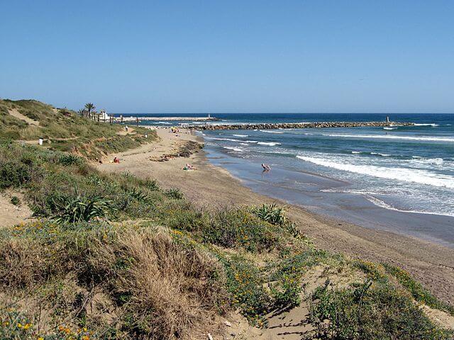 playa artola