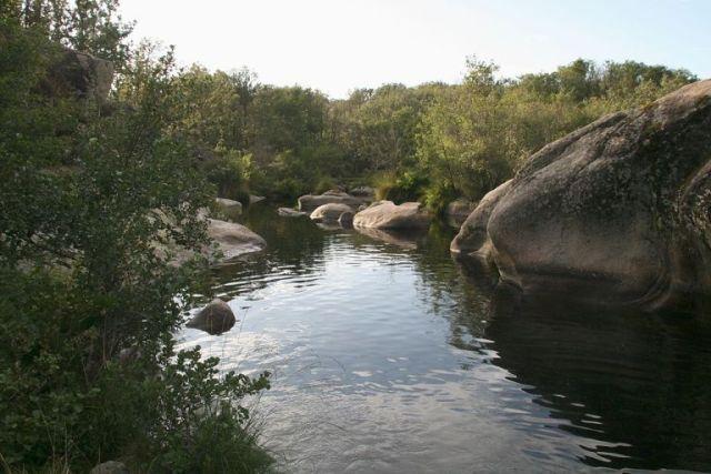 piscina-natural-riofrio-villasrubias