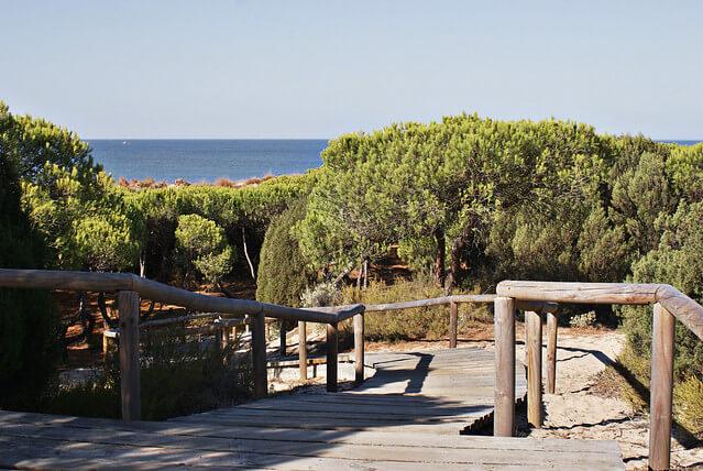 playa enebrales