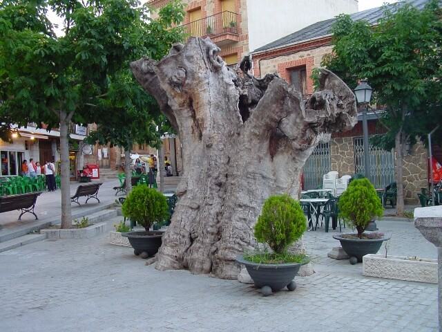 plaza alamo miraflores