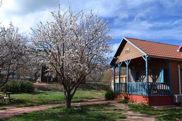 casas rurales madera la vega