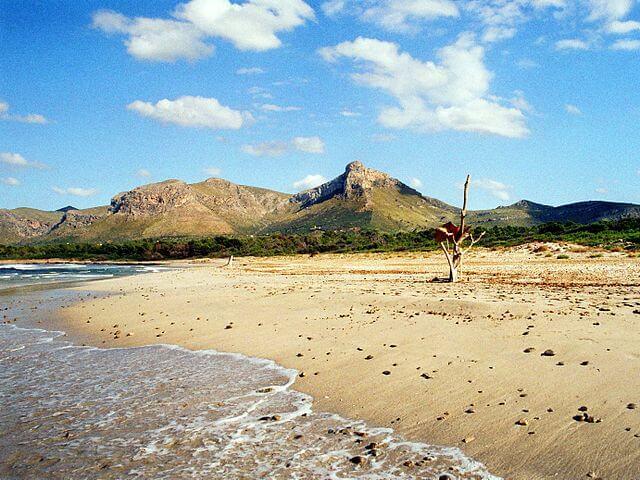 playa nudista sa canova mallorca