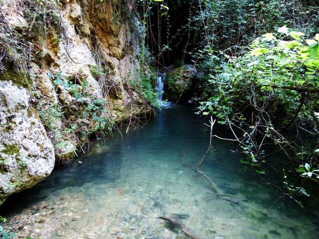 piscina natural pataco letur