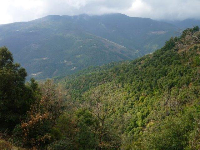 ruta parque natural montseny en barcelona